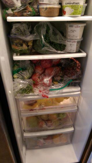 fridgeshot